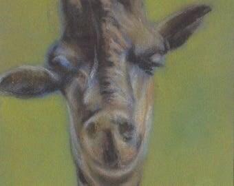 Original Giraffe Pastel Aceo Wildlife Painting Drawing Animal ATC Art Card