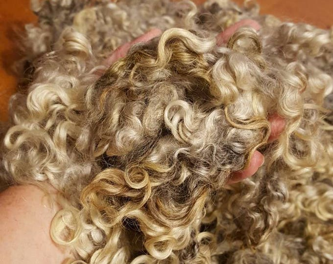 Featured listing image: Lincoln Wool Locks, Natural Tones Silvery Grays and White