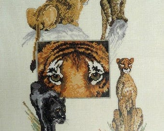 wild animals big cats Oehlenschlager 84846