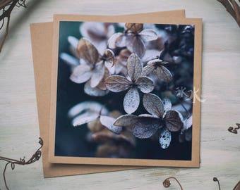 Floral Photo Card - Hydrangea - Beauty of autumn...
