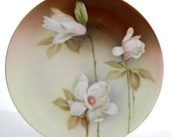 "RS Prussia Reinhold Schlegelmilch Dogwood Floral Plate, Antique German Porcelain 8"""