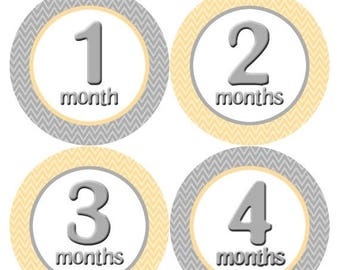 Monthly Stickers Monthly Baby Stickers Baby Month Milestone Stickers Baby Month Stickers Month to Month Bodysuit Stickers Shower Gift 013