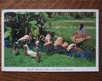 Original Vintage 1960's Ross Allen Postcard,Seminole Indian,Flamingos,Florida Silver Springs History,Tourism,Retro Vacation Souvenirs,Kitsch