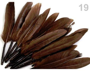 19 - 9-14 cm Brown duck feathers