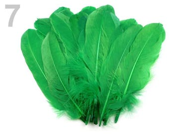 007 - Set of 5 16/21 cm green goose feathers