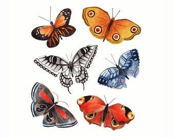 Illustrated Butterflies Print