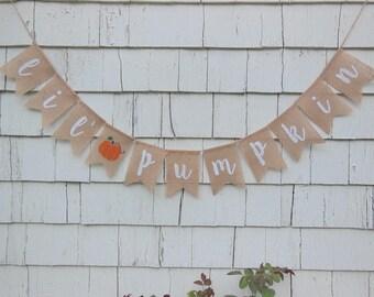 Little Pumpkin Banner, Little Pumpkin Baby Shower Decor, Burlap Garland, Pumpkin Shower Decor, Rustic Shower, Little Pumpkin Garland Sign