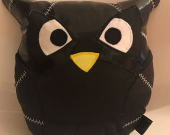 Catwoman Super Owl