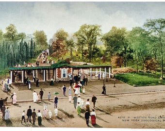 boston road entrance New York Zoological Park 1906 unused postcard
