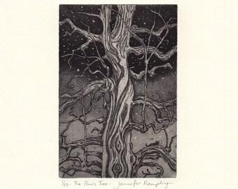 The Paris Tree - Tree Etching by Jennifer Rampling