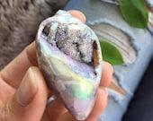 Aura druzy shell, opalized druzy fossilized shell, shell, fossil, druzy shell, rainbow aura , opal auara