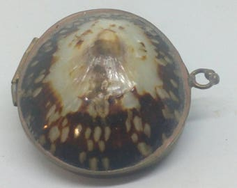 Vintage Shell Trinket Box..2x1 inch..Brass Fittings..In new Condition