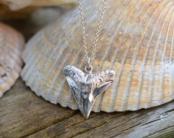 Shark tooth necklace, shark tooth pendant, silver shark tooth, cast from real shark tooth, bull shark tooth, large shark tooth, shark teeth