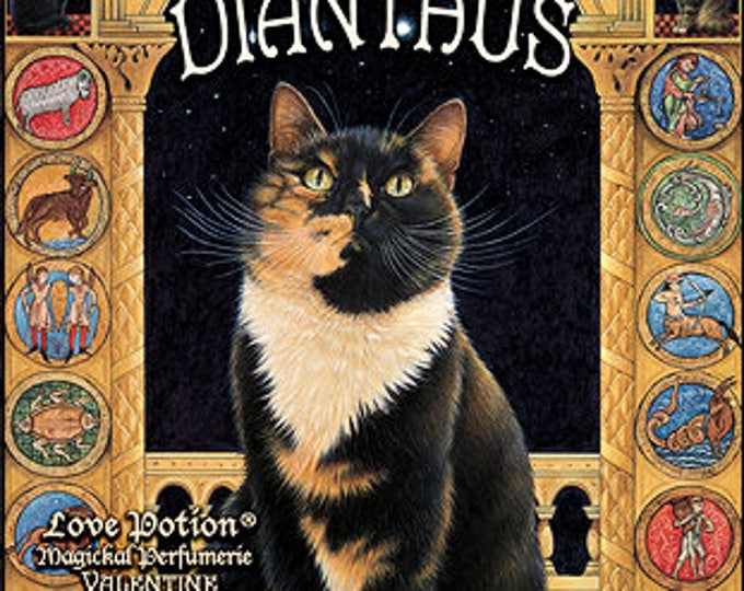 Ivory Cats: Dianthus - for Men and Women - Handcrafted Unisex Fragrance - Love Potion Magickal Perfumerie