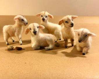 Needle felted sheep, Tiny lamb, Needle felt animals, Felted lamb, Felted sheep