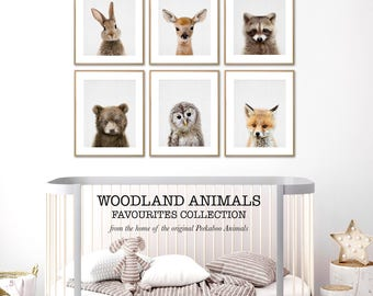 Woodland Nursery Print Set, Baby Animal Wall Art, Woodland Decor, Printable Digital Download, Print Set of 6, Six, Nursery Forest Animals