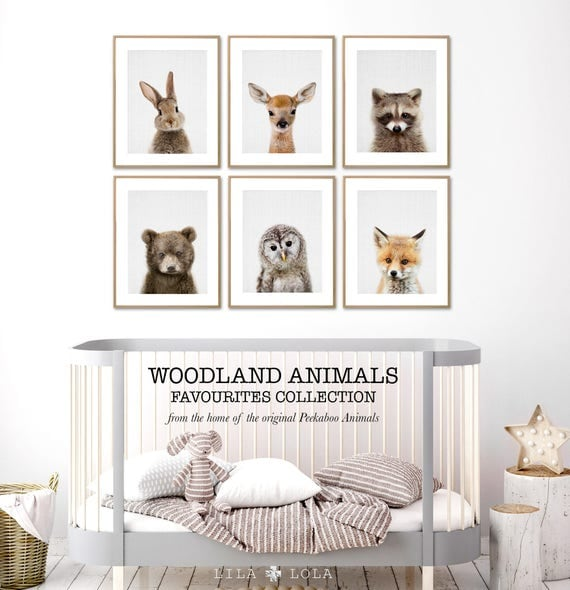 Animal Nursery Prints Woodland Baby Wall Art Woodland
