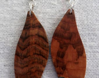 Maple Burl Earrings with Turquoise inlace with Sterling Silver Ear wires and Findings JER141SS