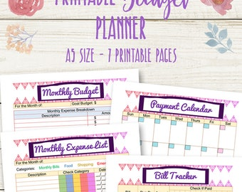 A5 Budget Printables, Monthly Budget Planner, Financial Organiser, Financial Sheets, Household Planning, Filofax Debt Plan, Instant Download
