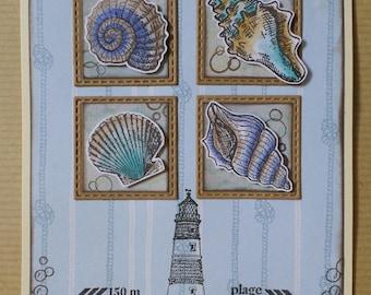 Sea shells and light blue card