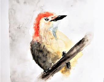 ORIGINAL Watercolour Painting, Red Bellied Woodpecker