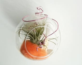Coral hanging plant ball - in STOCK
