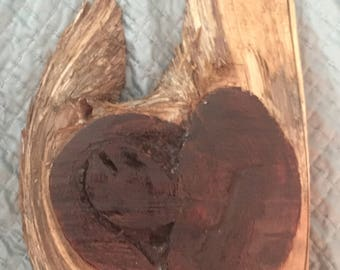 Heart of a Cedar tree