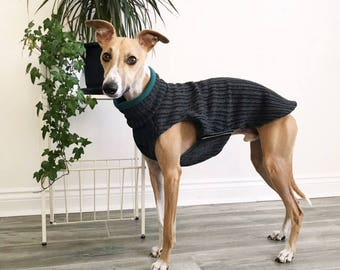 Fleece & Cable knit jumper-sweater for whippet/sighthound *Charcoal grey + Teal