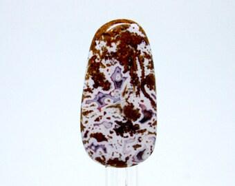 Apple Valley Stromatolite Designer Cabochon