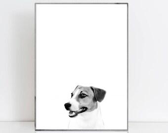 Jack Russell print Jack Russell Terrier Modern dog art Animal Prints Nursery decor Animal print Nursery prints Animal printable Jack Russell