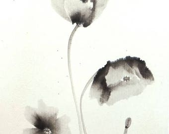 Poppies in flower. Summi-e ink and rice paper.