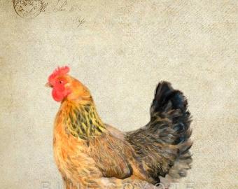 Chicken Print, Barnyard Animal Prints, Nursery Art, Farm Animal Prints, Digital Download Printable File #bc146