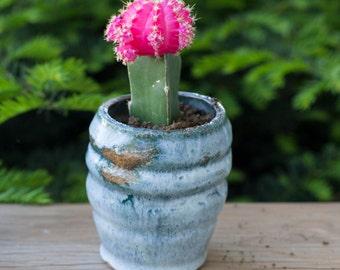 Blue, Green Ceramic Ridged Cup