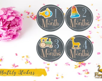 Bodysuit Monthly Stickers Baby Month Stickers Milestone Stickers Monthly Baby Stickers Photo Sticker Month by Month Baby Sticker Shower Gift