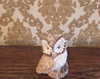 Owl Made of Tiny Sea Shells