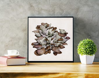 Mushrooms print, oyster mushrooms, nature, wall print, digital art