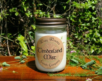Hand Poured Soy Candles, 12 oz Soy Candle, Mason Jar Candles, Pure Soy Candles Handmade, Soy Wax Candles, Scented Candles, Candle Gift