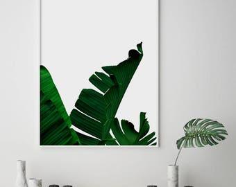 Banana Leaf, Banana Leaf Print, Botanical Print, Tropical Print, Plant Print, Palm Tree Print, Palm Print, Printable Art, Instant Download
