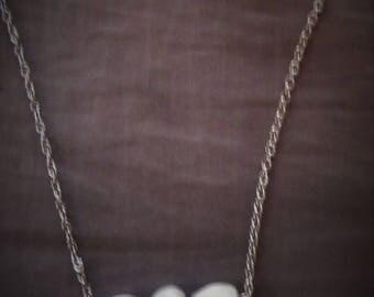 Pendant necklace job tear seeds