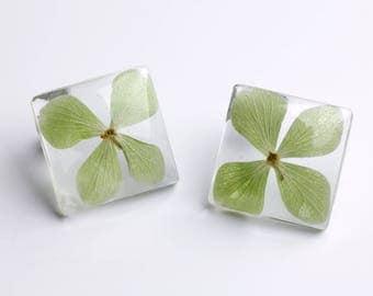 Resin earrings-Real hydrangea flowers-