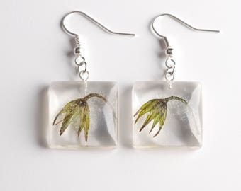 Square-shaped resin earrings with borage buds-