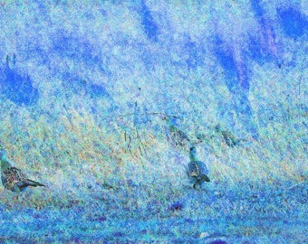 Pheasant painting In Blue.