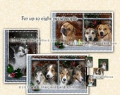 Snowfall - Custom Pet Photo Card
