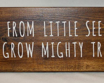 Wooden From Little Seeds Grow Mighty Trees Sign
