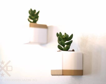 Succulent wall planter, Wall Planter, Air Wall Planter, Wall Planters Indoor, Wall Succulent, Vertical Garden, Wall Planter Set