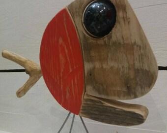 Fish eye Big Driftwood
