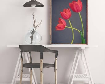 Red Tulips Art Print, Large Flower Photography, Tulip Print, Wall Art Print, Botanical Print, Floral Art Print, Nature Photograph