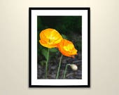 Orange Poppies Printable ...