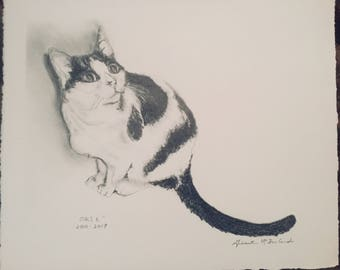 Custom Pet Portrait from photos- Graphite Drawing - 8x10
