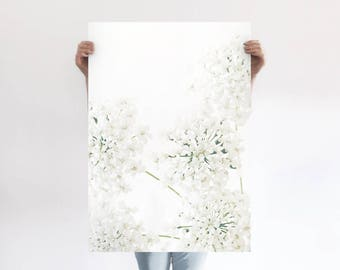 Queen Anne's Lace A1 Art Print, White Floral Poster, Extra Large Flower Print, Wildflower, Botanical Art, Girls Room, Wall Decor, Modern